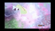 Winx Club Layla and Stella Wide Awake Others Colours