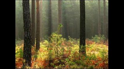 Есен В България - Исихия