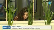 България е на първо място в Европа по брой жени, работещи в ИТ сектора