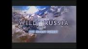 Дивата Русия - Тайната гора