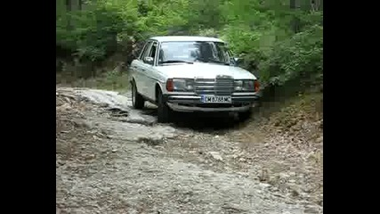 W123 2