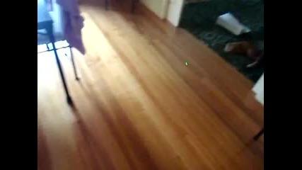 Боулинг с лазер и котка