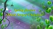 Пъстри пролетни цветя! ... (music Sergey Chekalin) ...