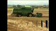 Световната цена на житото се е покачила с 25-30 %