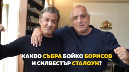 Какво събра Бойко Борисов и Силвестър Сталоун?