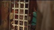 Prison Break _ Бягство от затвора (2008) S03e10 Bg Audio » Tv-seriali.com Онлайн сериали за всеки вк