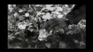 Ne Yo - Mad (remix) High Quallity