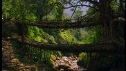 Жив Мост ...