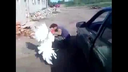 Пуйка се бие с Руснак
