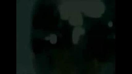Pussycat Dolls - Hush,  Hush;hush,  Hush