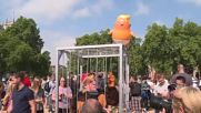 UK: 'It's a joke' – Trump-supporters slam Baby Trump Balloon