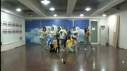Girls' Generation ( Snsd - Tell Me Your Wish ( Genie ) ( Demo Version ) Dance Practice