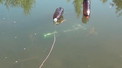 Вижте как се лови риба без въдица ,а с пластмасова бутилка!