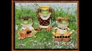 Жаба жабурана - Детска песничка