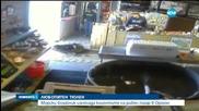 Тюлен изненада клиентите на рибен пазар