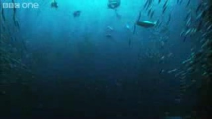 Underwater Armageddon - Natures Great Events: The Great Tide