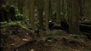 ** Downhill Extreme - Camblecam Coll **