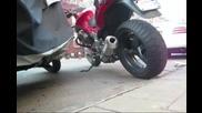 Moto Guzzi Breva V1100 Agostini Silencer - Exhaust