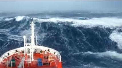 Оживялото Море... Не Е За Хора Със Слаби Нерви...