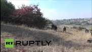 Russia: At least three militants killed during Ingushetia 'counter-terrorism' op