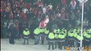 Бой при Цска - стюарди срещу фенове