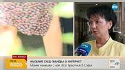 Арнаудова: Момчето, намушкало съученик, твърди, че е провокиран