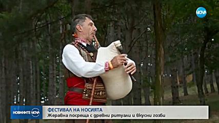 Древни ритуали и вкусни гозби на фестивала в Жеравна