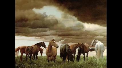 Ennio Morricone - Wild Horses