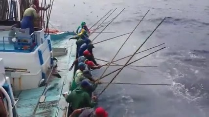 Не сте виждали такъв риболов