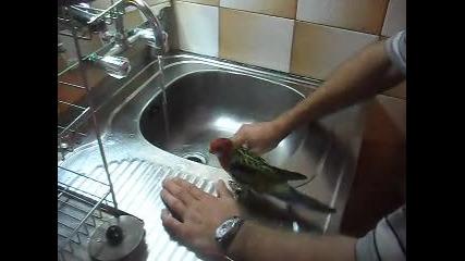 Розелата ми се къпе - част 1