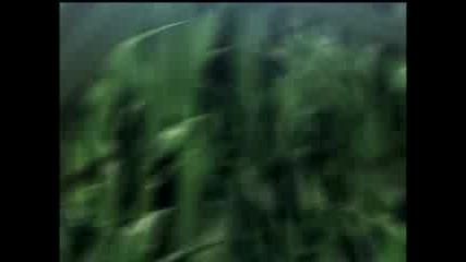 Shingetsutan Tsukihime - 00 Prologue