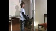 Метин и Текин заплашват сестра си, Опасни улици