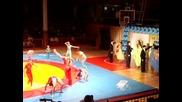 Sporten Klub Po Akrobatika - Ruse