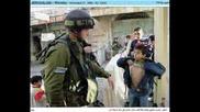 Curasbun Oi! - Palestina