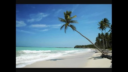 Oceans four feat. Adam Clay - Beautiful Life