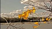 Есен..., прозрачно утро