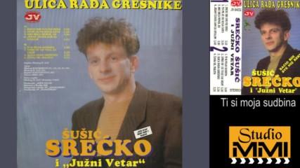 Srecko Susic i Juzni Vetar - Ti si moja sudbina (Audio 1992)