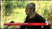 Осъдиха 80-годишната баба Божия - сяла канабис