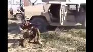 Малоумник с картечница срещу снайперист! Как мислите, кой от двамата е по-добър