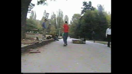 Fly Skateboards - Gutrteshun