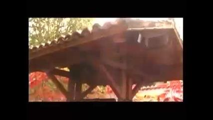 Rajko Kirilov - Horo se vie