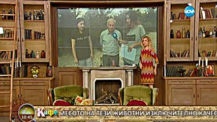 На кафе от село Веселиново, където се отглежда рядката порода източнобалканска свиня - част 1