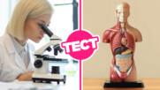 ТЕСТ: Можеш ли да се справиш с тези базови въпроси по биология?