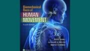 Download Biomechanical Basis of Human Movement Free Ebooks