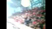 Волейбол * Цска - Зенит 3:1 * 20.01.2010