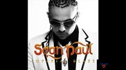 Sean Paul - Now That Ive Got Your Love