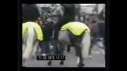 Football hooligans Chelsea Cardiff city 2010