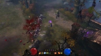 Diablo 3 Witch Doctor Wall Of Zombies