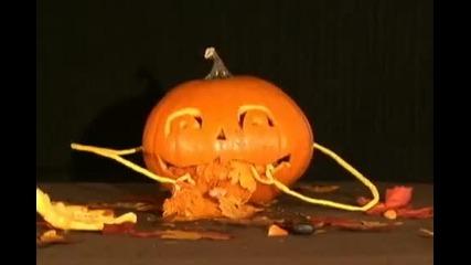 Събуждане на Halloween
