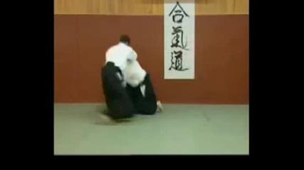 Aikido Master - Shihan Tissier